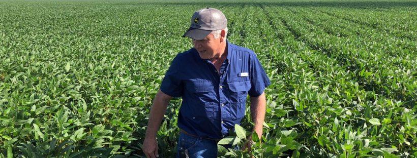 Hàng rào thuế quan của Trump đang gây khó khăn cho nông dân, nhưng nhiều người không hề trách ngài Tổng thống